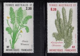 FSAT TAAF 1986 MNH Sc #121-#122 Set Of 2 Cotula Plumosa, Lycopodium Saurus Plants - Terres Australes Et Antarctiques Françaises (TAAF)