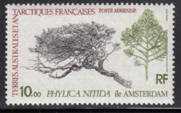 FSAT TAAF 1979 MNH Sc #C59 10fr Phylica Nitida Plant - Poste Aérienne