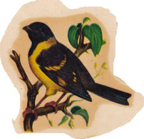 CABECITA NEGRA CARDUELIS MAGELLANICA AVE BIRD ARGENTINA-STICKER PEGATINA VINTAGE CIRCA 1950s - BLEUP - Vignettes Autocollantes