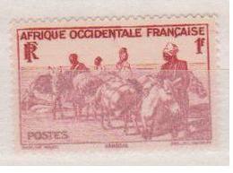 A  O  F        N°  YVERT  :    30       NEUF AVEC  CHARNIERES      ( Ch 1/10  ) - A.O.F. (1934-1959)