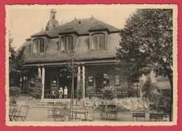 Namur - Hôtel-Restaurant Du Panorama  - 1963 ( Voir Verso ) - Namur