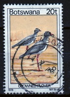 Botswana 1978 Single 20t Definitive Stamp From The Birds Set. - Botswana (1966-...)