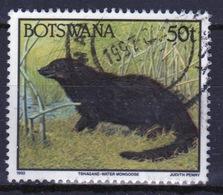 Botswana 1992 Single 50t Definitive Stamp From The Animals Set. - Botswana (1966-...)