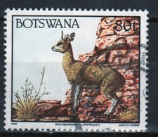 Botswana 1992 Single 80t Definitive Stamp From The Animals Set. - Botswana (1966-...)