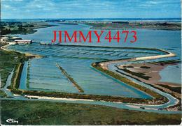 CPM - Claires à Huitres - Vue Aérienne En 1975 - LA FAUTE SUR MER ( Canton De Mareuil ) 85 Vendée - Scans Recto-Verso - Mareuil Sur Lay Dissais