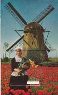 PS / CPM 9X14 . PAYS BAS . Carte à Système . Jeune Hollandaise Devant MOULIN A VENT +Dépliant 10 Mini-vues 4.5 X 6.5 Cm - Non Classificati
