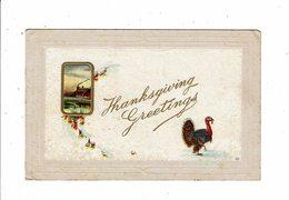 Cpa Carte Gaufrée THANKSGIVING Paysage Et Dindon - Thanksgiving