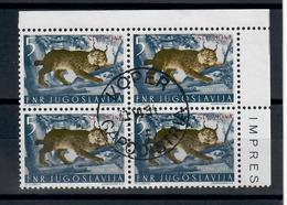 TRIESTE ZONA B STT VUJA  1954 - ANIMALI    QUARTINA USATA - Occ. Yougoslave: Trieste