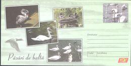 BIRDS, SWANS, DUCKS, WATER BIRDS, COVER STATIONERY, 2015, ROMANIA - Cygnes