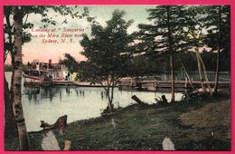 "Sydney - Landing At "" Sangariee "" On The Mira River Near Sydney - Paquebot - Animée - N.S. - Colorisée - Sydney"