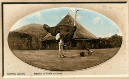 SIERRA LEONE(AUTRUCHE) - Sierra Leone