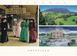 Sheffield Multiview, North West Tasmania - Unused - Other
