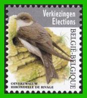 BUZIN - Hirondelle De Rivage - 1985-.. Birds (Buzin)