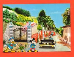 Walt Disney Topolino  Pluto Paperino E Qui  Miky Mouse Goffy Donal Duck Huey Auto Car - Disneyworld
