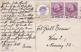Säuglingsschutz, Verein. Mitgestempelte Spendevignette 1911 - Kind & Jugend