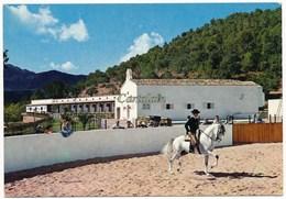 Barbacoa - Fiesta Andaluza - Espagne