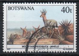 Botswana 1987 Single 40t Commemorative Stamp From The Animals Of Botswana Set. - Botswana (1966-...)