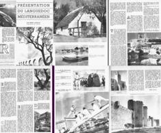 """LE LANGUEDOC MEDITERANEEN  """" GARDIAN / CANAL DES ETANGS /BEZIERS / JOUTES /MONTFERRIER /BOEUF DE MEZE/AIGUES-MORTES 1955 - Languedoc-Roussillon"""