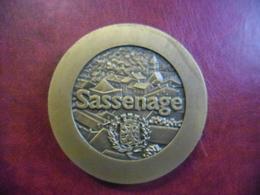 MEDAILLE De SASSENAGE (ISERE - 38) De 2001 De Diamètre 65 Mm - Poids 187 Grammes (bronze ?) - France