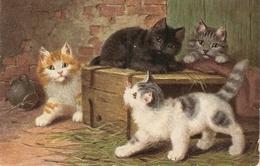 """""""hree Lovely Kittens"""" Tuck Oilette  When Cart Are Kitens Ser. PC # 3531 - Tuck, Raphael"""