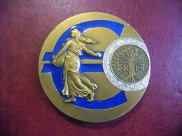MEDAILLE EURO De 2002 De 2 € SEMEUSE - 65 Mm - Poids 159 Grammes Bronze Florentin Idéal Cadeau Naissance Cette Année Là - France