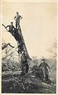 Themes Div-ref AA261- Carte Photo -arbres -bois - Bucherons - Bucheron - Nant Dans Texte - Aveyron - - Autres Communes