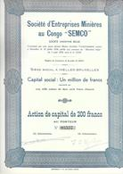 """Soc. D'Entreprises Minières Au Congo """"SEMCO"""" - Afrique"""