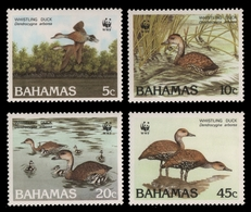 Bahamas 1988 - Mi-Nr. 672-675 ** - MNH - Vögel / Birds - Bahamas (1973-...)