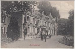 28443g DOMMELDANGE - ATTELAGE -1908 - Luxembourg - Ville