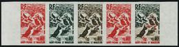 N° 426, 428 Et 430. Oiseaux, Les 3 Valeurs Représentant Les 3 Types De La Série 425/30, Chaque En Bande Horizontale De 5 - Francobolli