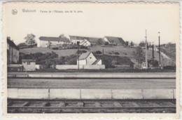 28409g  FERME De L'ABBAYE - Walcourt - Walcourt