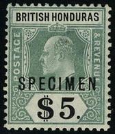 Neuf Avec Charnière N° 69, 5$ Vert Et Noir, Spécimen, T.B. - Francobolli