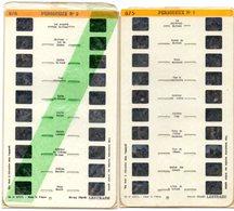 Lot De 9 Stéréocartes Lestrade De La Dordogne ( Périgueux, Sarlat , Domme, Bergerac Et Environs , Les Châteaux Et Divers - Stereoscopes - Side-by-side Viewers