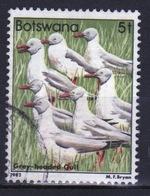 Botswana 1982 Single 5t Commemorative Stamp From The Birds Set. - Botswana (1966-...)
