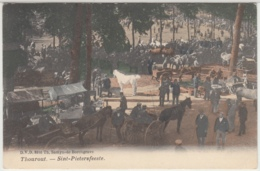 28436g SINT-PIETERSFEESTE - CHARRETTE à CHEVAL - Thourout - 1911 - Animée - Colorisée - Torhout