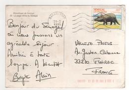 """Timbre, Stamp  """" Dinosaure : Tricératops """"  Sur Cp , Carte , Postcard Du 29/03/1995 - Senegal (1960-...)"""