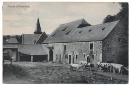 ANNEVOIE La FERME 1909 Cour Intérieure Bétail Vaches - Anhée - Anhée