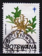 Botswana 1991 Single 8t Commemorative Stamp From The Christmas Seed Pod Set. - Botswana (1966-...)