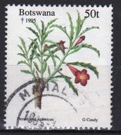 Botswana 1995 Single 50t Commemorative Stamp From The Christmas Plants Set. - Botswana (1966-...)