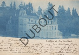 Postkaart - Carte Postale HABAY-LA-VIEILLE Château De La Trapperie 1901 (O75) - Habay