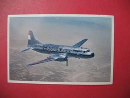 Carte  Avion  KLM - Avions