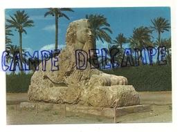 Giza. Gizeh. LE Sphinx De Sakkara - Egypte