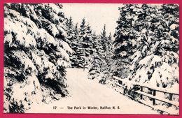 Halifax - The Park In Winter - N.S. - Publisher W. E. HEBB - Halifax