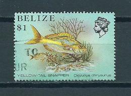 1984 Belize Sealife,fish Used/gebruikt/oblitere - Belize (1973-...)
