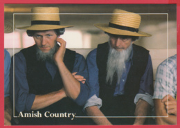Grettings From THE AMISH COUNTRY - Photo D. Noble *Gettysburg ** 2 SCANS - Etats-Unis