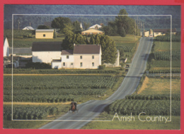 Grettings From THE AMISH COUNTRY - Photo D. Noble ** 2 SCANS - Etats-Unis