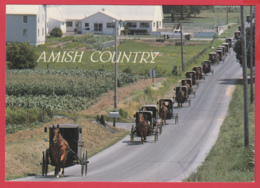 Grettings From THE AMISH COUNTRY -CALÈCHES- Photo D. Noble ** 2 SCANS - Etats-Unis