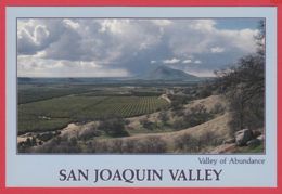 SAN JOAQUIN VALLEY , Valey Of Abundance - Photo David Compolongo ** 2 SCANS - Etats-Unis