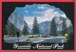 YOSEMITE NATIONAL PARK - WAWONA TUNNEL - Photo A. Compolongo ** 2 SCANS - Yosemite