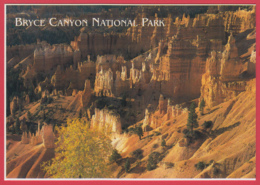BRYCE CANYON NATIONAL PARK * Photo Josef Muench* 2 SCANS - Bryce Canyon
